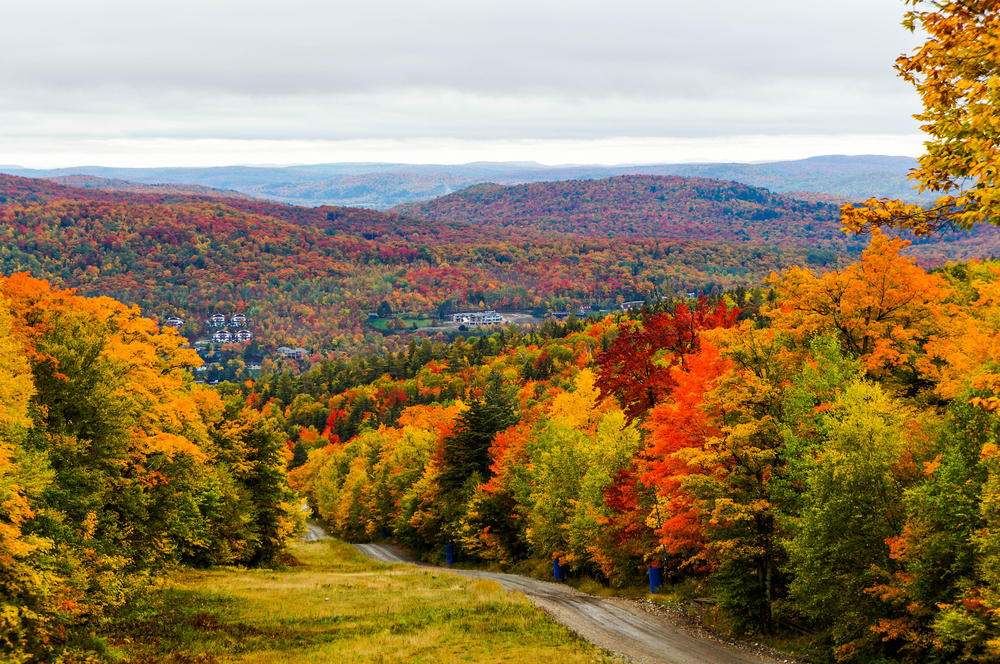 What hotels are doing to help you admire the fall foliage